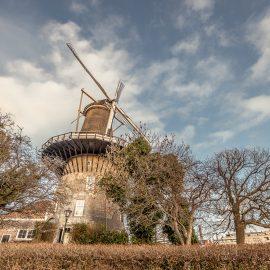 Такие разные Нидерланды!